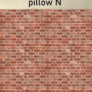 PILLOW N.jpg