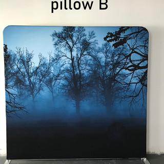 PILLOW B.jpg