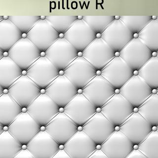 PILLOW R.jpg