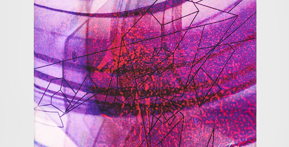 Retina II Silk Mini Scarf|Eleni Bantra
