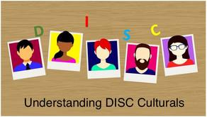 DISC - Newsletter #014 UNDERSTANDING DISC CULTURES