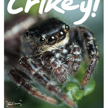 Cover of Crikey Magazine