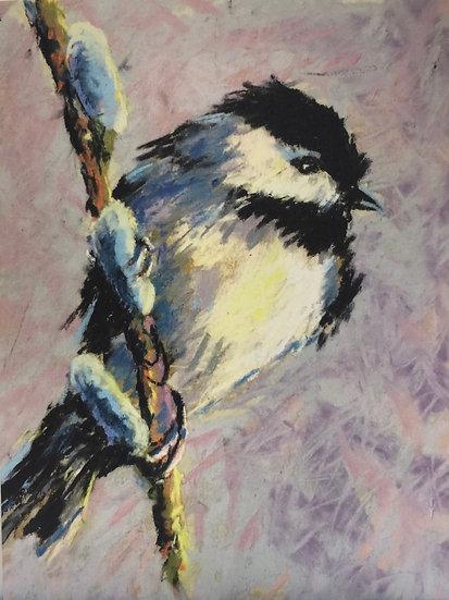 Notecard 5: chickadee on Willow Buds