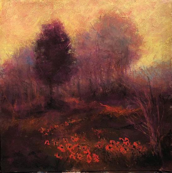 Poppy Fields Forever, 12x12 pastel