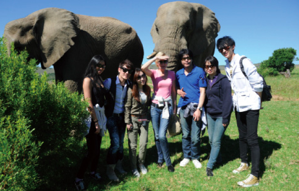 Veld's Blogger Trip to South Africa