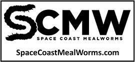 Space Coast Mealworms