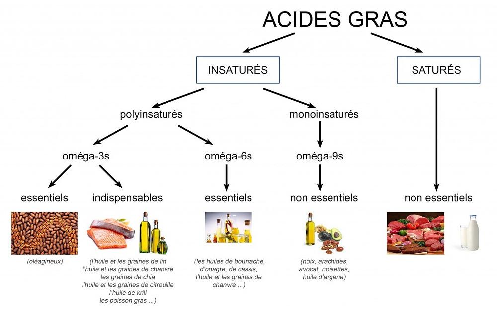 ACIDES GRAS OMÉGA 3-6-9