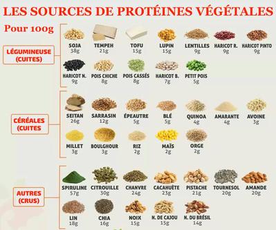 Guide pratique de la nutrition (Partie 1)