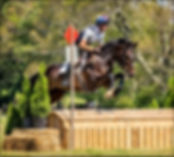 ollie and alex roll top xc.jpg
