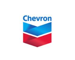 Chevron _ novelprint