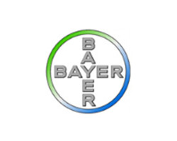 bayer _ novelprint