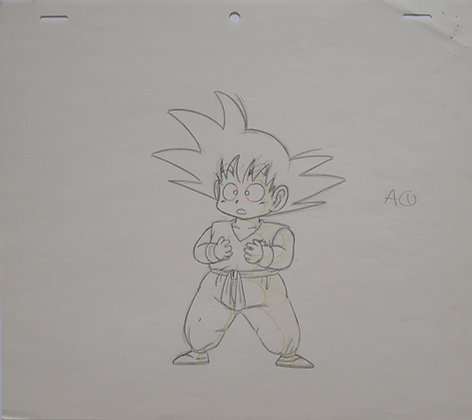 Dragon Ball, Sangoku during the Tenkaichi Budokai/World Martial Arts Tournament