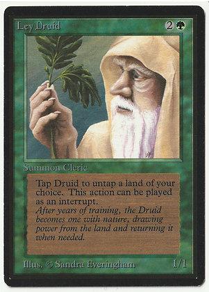 Magic: The Gathering, Ley Druid, Beta, Near Mint (1993)