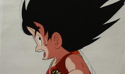 Dragon Ball's Sangoku anime cel