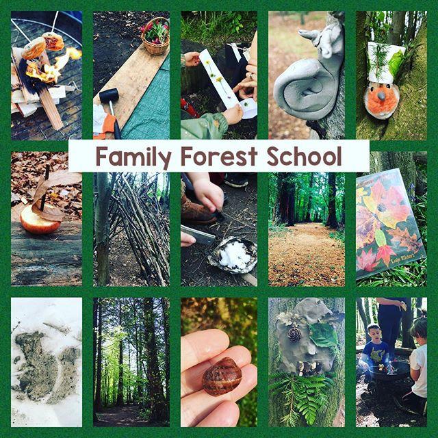 Family Forest School 4Week Block 1 child