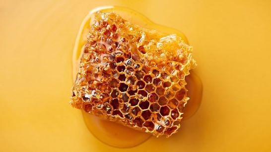 Se vuoi prenderti il miele, non dare calci all'alveare
