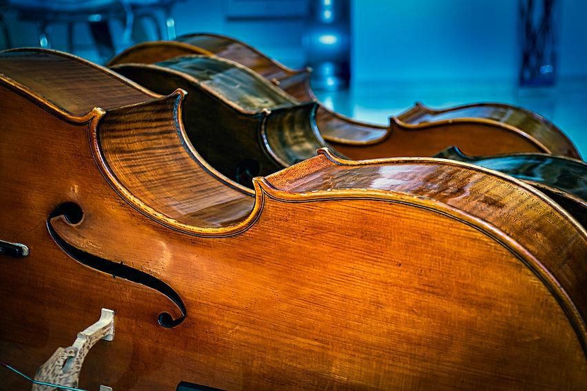 cello-6357123_1920.jpg