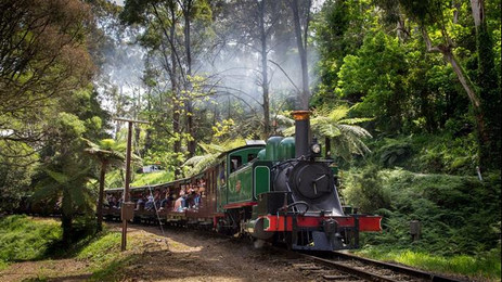 Dandenong Ranges /  Puffing Billy