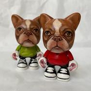 Red Boston Terrier Jankys
