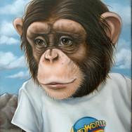 Auto Chimp