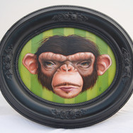 William Ray (Uncle Monkeys series)