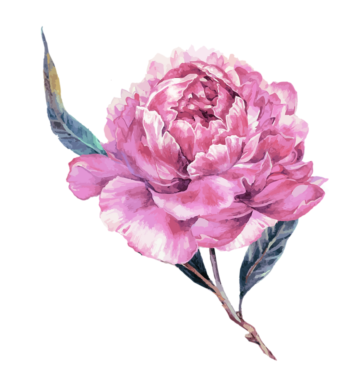 Flower cut out-04.png
