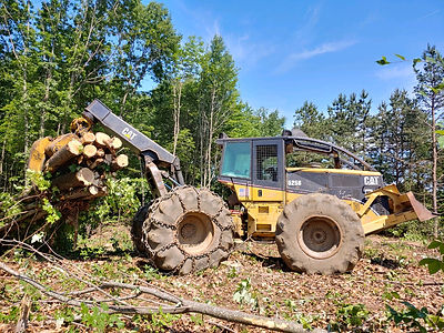 maine land clearing.jpg