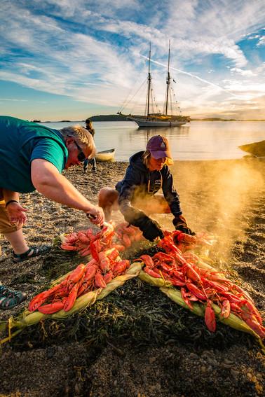 Serving Lobsters-6084.jpg