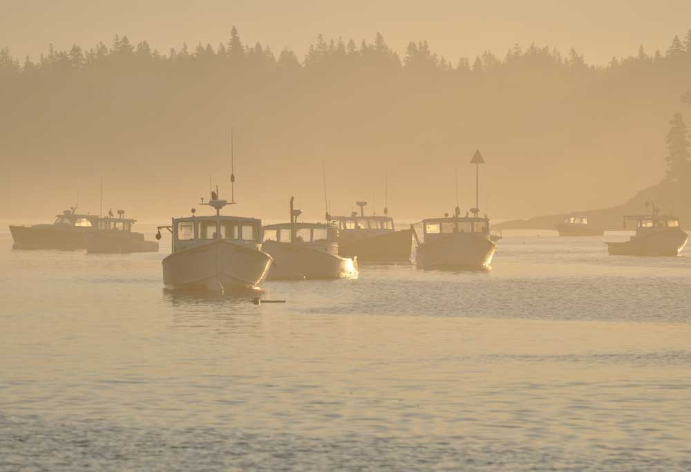 maine windjammer, schooner cruises, sunrise at Isle Au Haut, schooner vacations