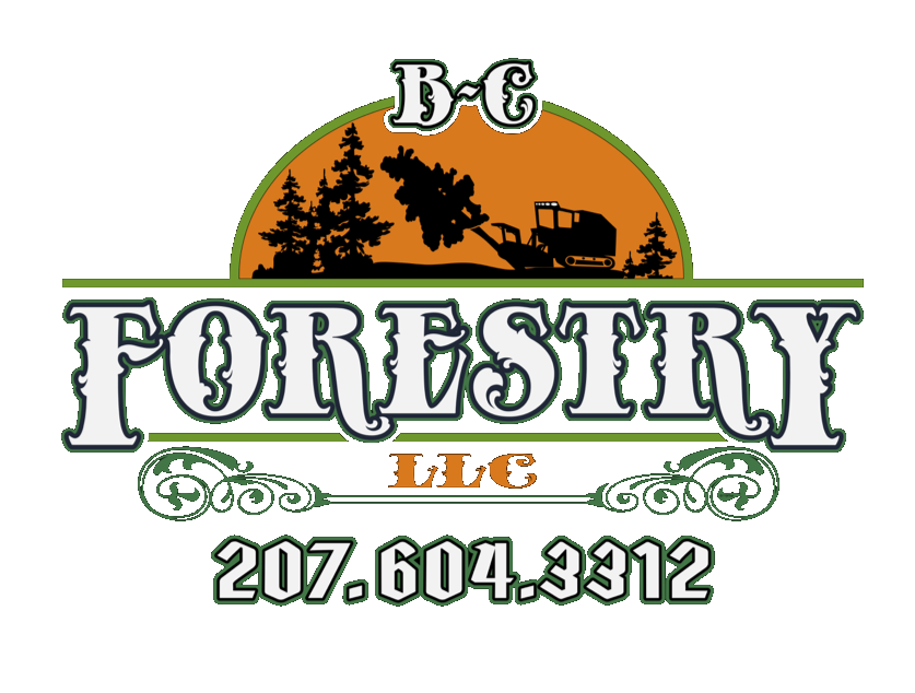 no%20background-BC%20forestry_edited.png