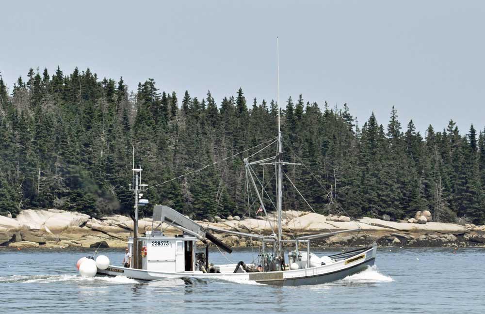 aine windjammer, working vessels in Maine, sardine carrier, windjammer cruises
