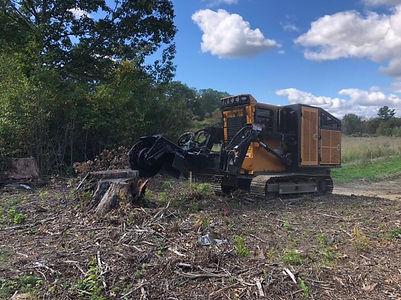 stump removal.jpg