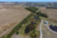 wetland link.JPG