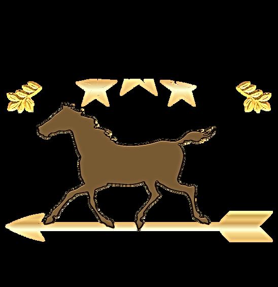 OneSelfDesignscampbuckaroo_logo.png