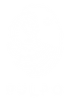 Logotype_Pulpo.png