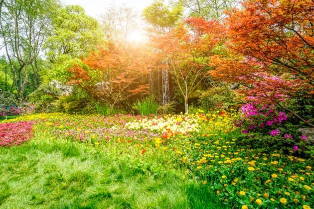 beau-parc-verdoyant_1417-1443.jpg