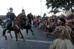 Native Brazilianshorse.jpg