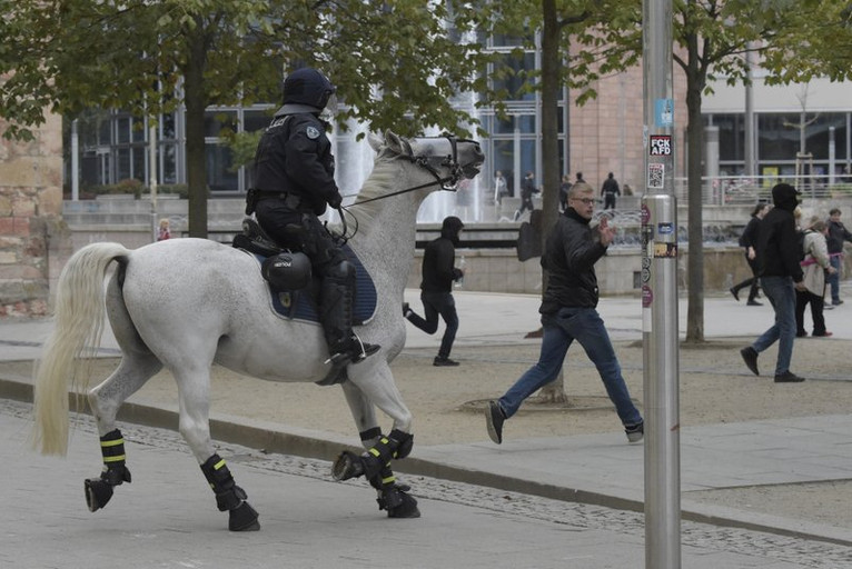 Germanyhorse.jpeg