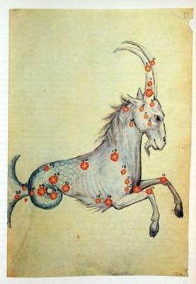 capricorn horse1.jpg