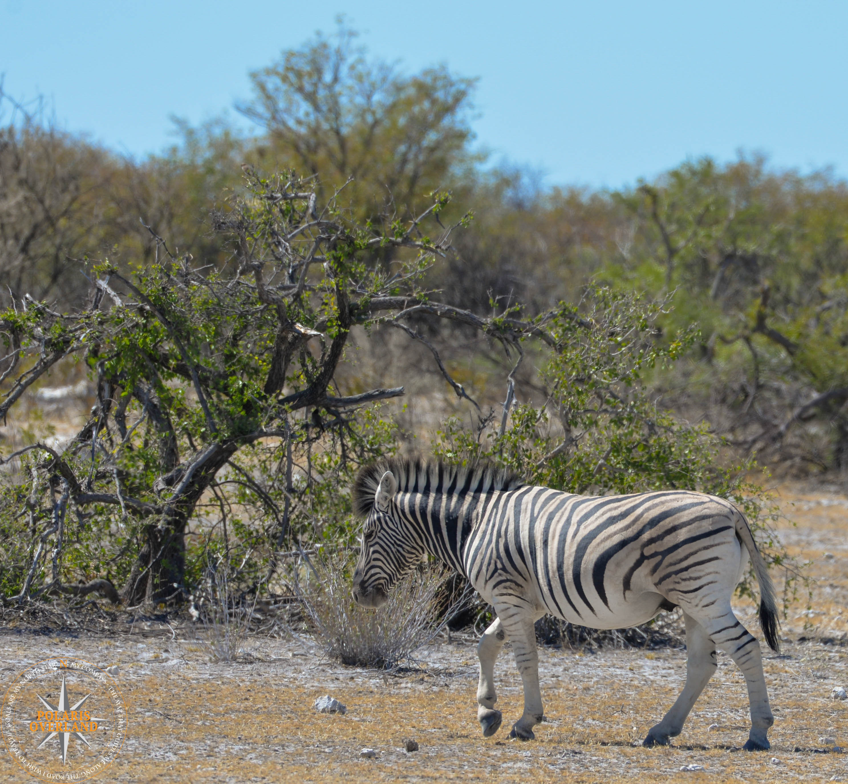 Namibia Day 9
