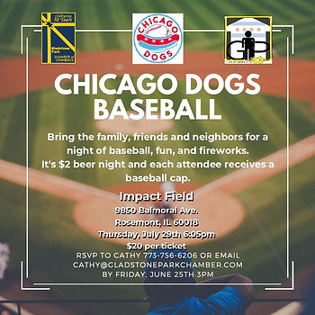 Chicago Dogs Baseball Outing-page-001.jp