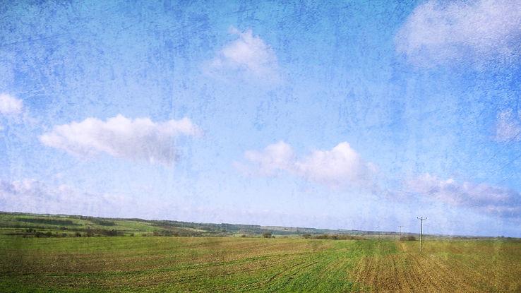 背景イギリスの牧草地.jpg