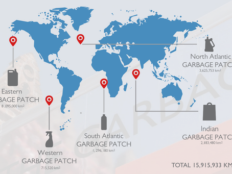 SINGLE USE PLASTICS AND THE GARBAGE PATCH STATE