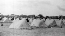 Settlers Tents