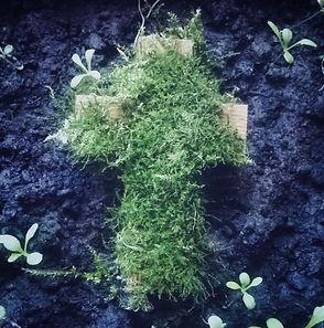 Mossy_Church.jpg