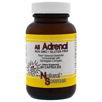 All Adrenal