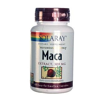 Maca Root Extract