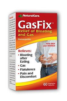 GasFix
