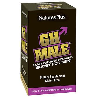 GH Male
