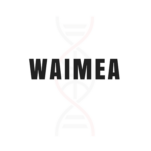 WAIMEA Skill Enhancement Clinic